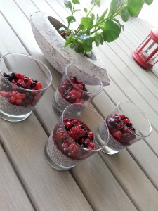 chia puding nutrifit